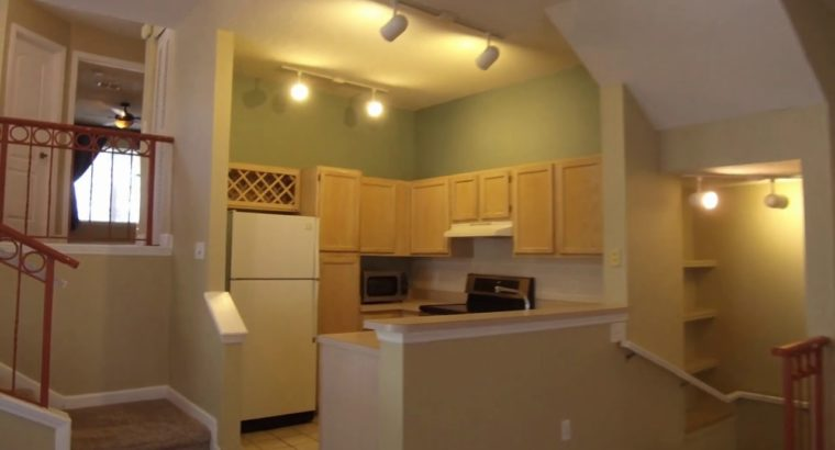 Condos for Hire in Tampa 1BR/1BA by Property Administration in Tampa FL