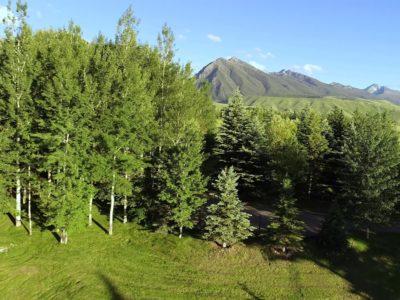 Extraordinary Montana property on the market