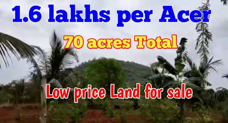 1.6 lakhs per Acer solely   low worth land on the market   odisha   All India property Finder   open plot  