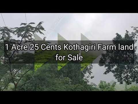 1 Acre 25 cents Farm / Agriculture land for Sale in Kotagiri Ooty #ooty#kotagiri#farmland#farmhouse