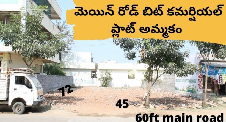 Industrial plot on the market in Hyderabad | Principal Highway bit | LRS paid | BL203
