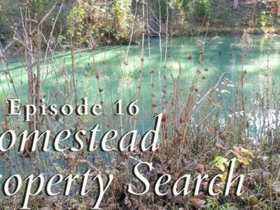 Homestead Property Search in Japanese Tennessee   Property Search Vlog #16   Nov 15 2020   Half 3