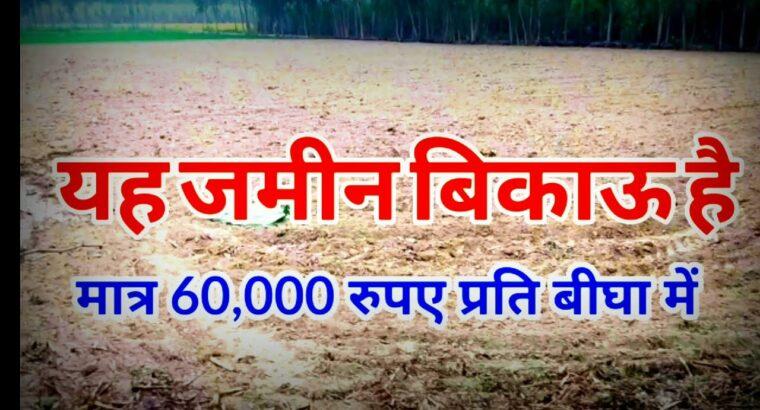 हाईवे के किनारे जमीन बिकाऊ है जमीन बहुत सस्ती है//#sale worth agreculute land in India