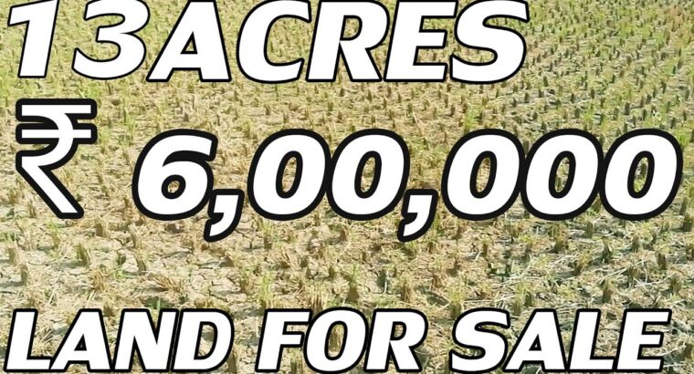 13 ACRES LAND FOR SALE | PADDY AGRICULTURAL PROPERTY FOR SALE | LOW COST LAND| PROPERTY PROMOTION TV