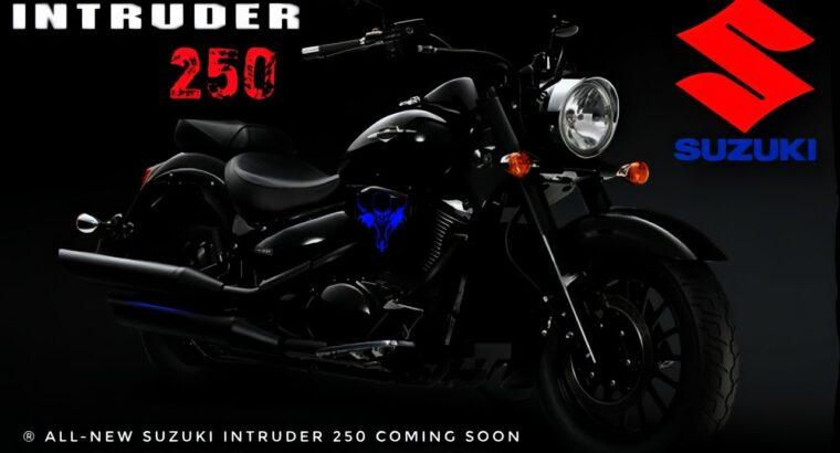 2020 SUZUKI Intruder 250 BS6 Launch in India ?| Worth & Spec |Adjustments & Evaluation |Bajaj Avenger rival