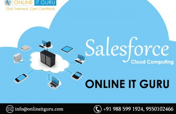 Salesforce on-line coaching