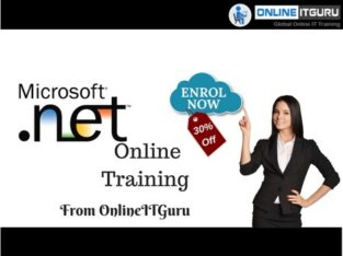 ASP.NET Coaching – OnlieITGuru Applied sciences