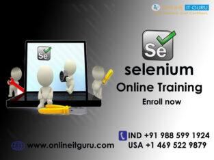 Selenium on-line programs
