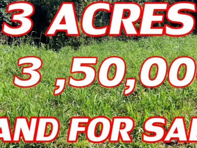 three ACRES PROPERTY FOR SALE | DAIRY FARMLAND FOR SALE | LOW COST LAND BUY AND SELL WITH DUDDU