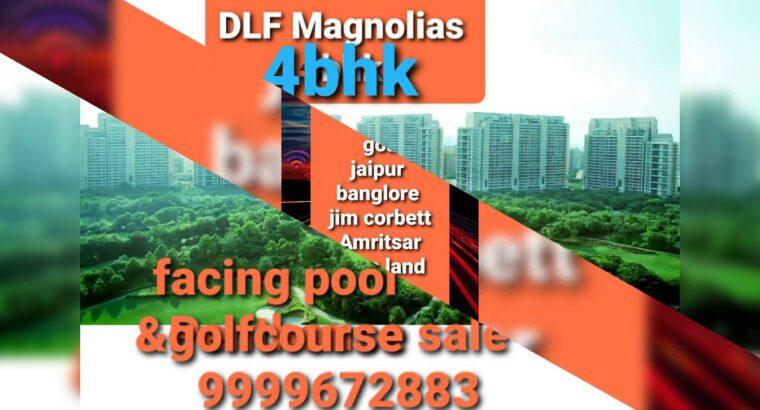 Property sale lease delhi india 9999672883