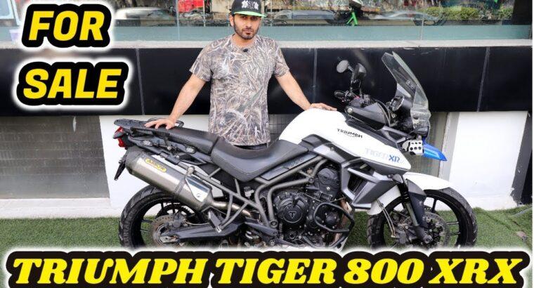 Triumph Tiger XRX 800   Used Superbikes   On the market   Born Creator