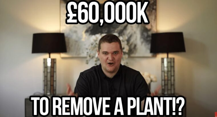 £60Ok TO REMOVE JAPANESE KNOT WEED!