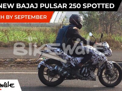 2021 Bajaj Pulsar 250 Noticed | EXCLUSIVE | Anticipated Launch Date and Value in India | BikeWale